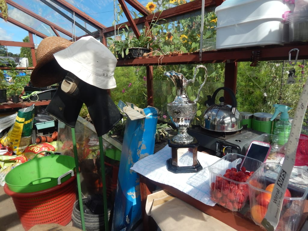 trophy in a greenhouse